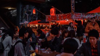 Yoyogi park street food