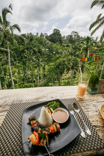 View from the Rice Terraces in Ubud, Bali
