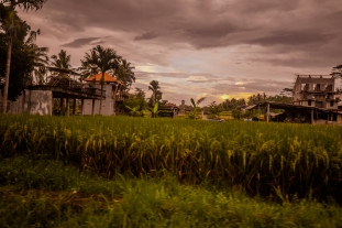 Sunset in the Village of Petulu